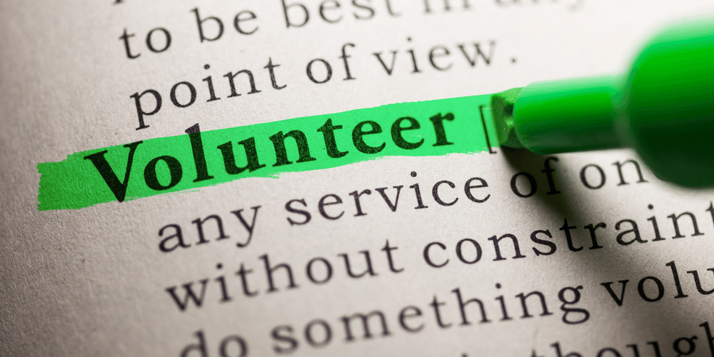 Volunteer in dictionary highlighted in green